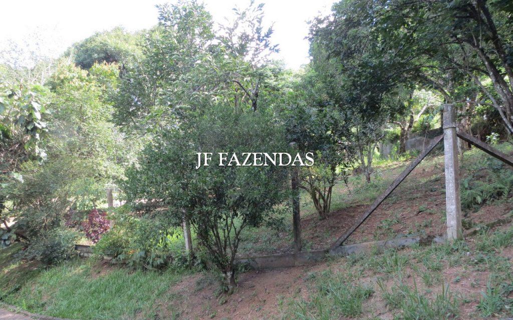 Sítio em Juiz de Fora/MG – 3 hectares