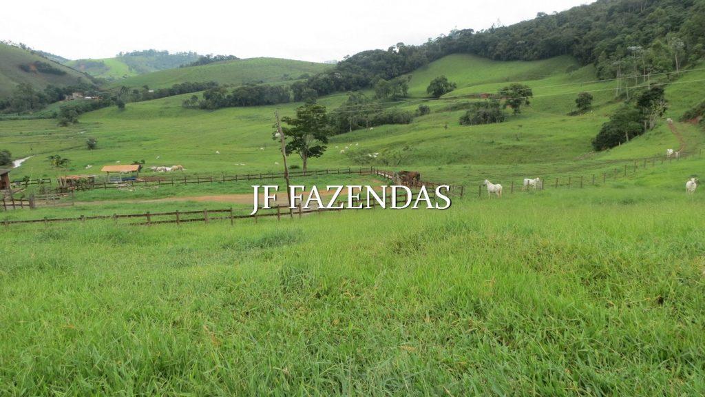 Fazenda em Santos Dumont – 105.01.15 hectares