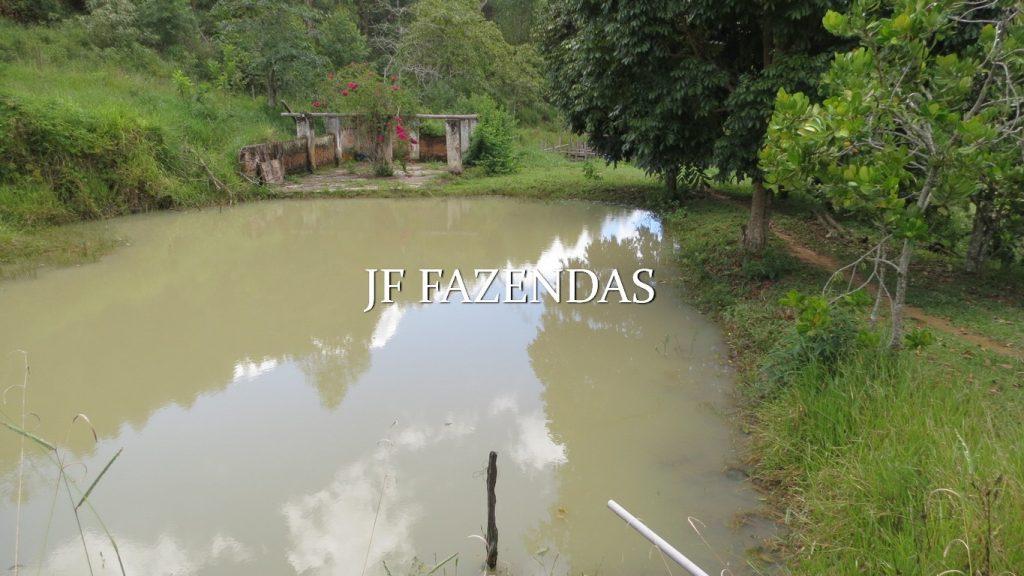 Fazenda em Mercês/MG 300 hectares