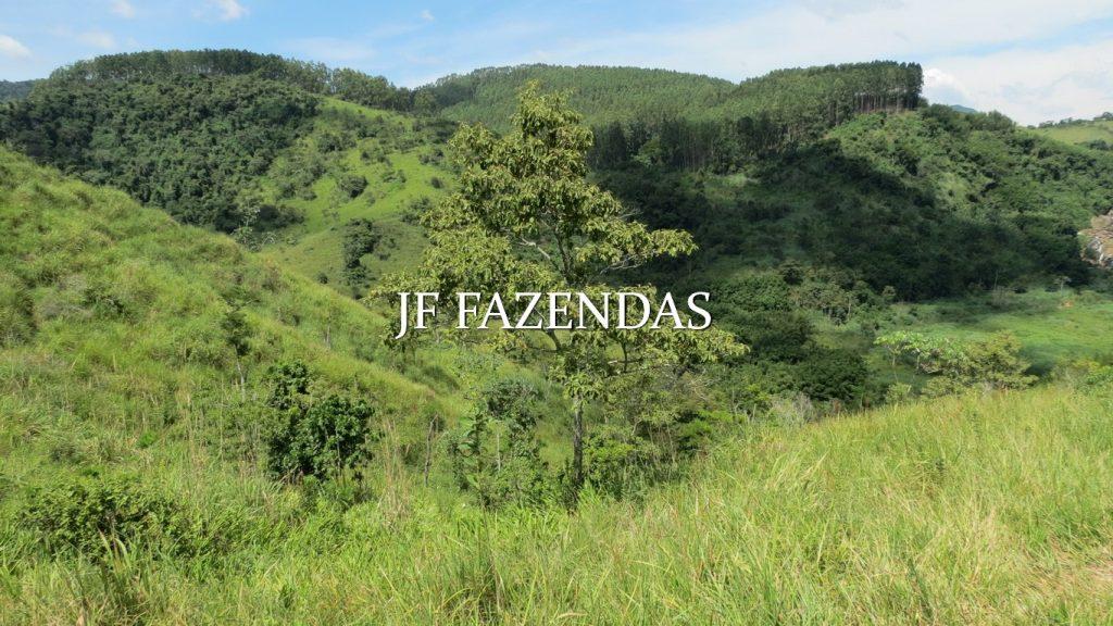Fazenda em Coronel Pacheco-MG 137 hectares