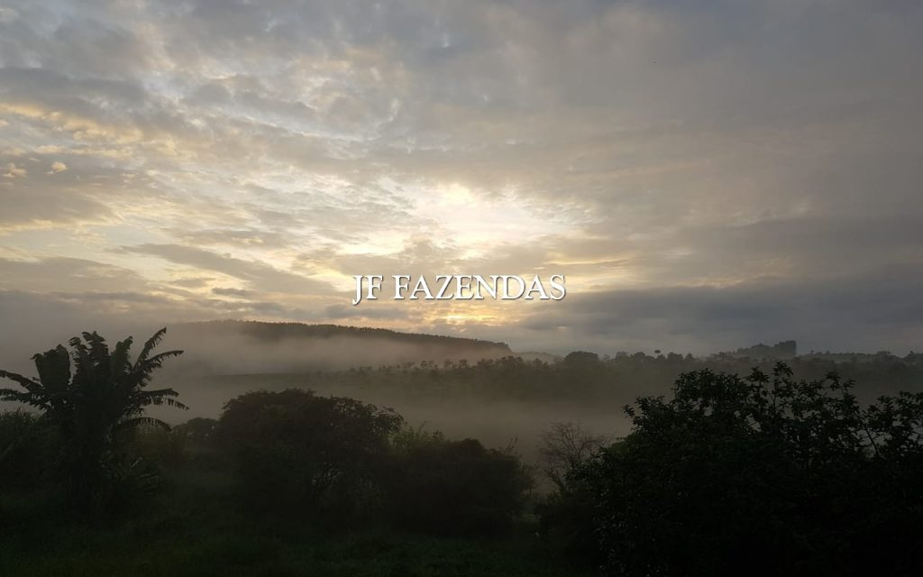 Sítio em Piau/MG 4 hectares